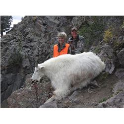 2016 Utah Statewide Mountain Goat Conservation Permit