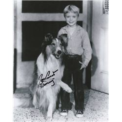 Jon Provost Signed Photo as Timmy from Lassie