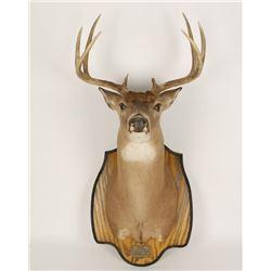 4X4 Buck Mount