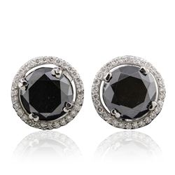 14KT White Gold 6.27 ctw Black Diamond and Diamond Earrings