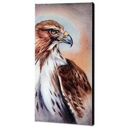 American Redtail Hawk by  Martin Katon