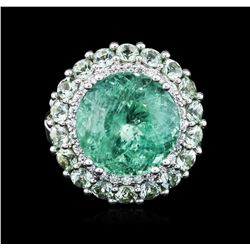 18KT White Gold 13.45 ctw Tourmaline and Diamond Ring