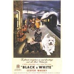 Scottie Black and White Scotch Whiskey Art Print
