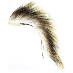 Northern Plains Porcupine hair dance roach,