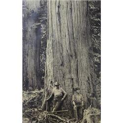 Original John D Cress (1864-1938) photograph C.