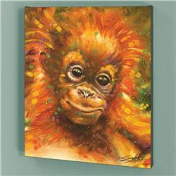 Baby Orangutan by  Stephen Fishwick