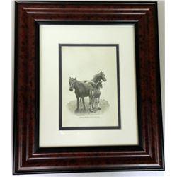 Rare 1891 Prairie Farm Horse Exmoor Ponies and Foal