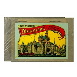 Disneyland Window Decal Castle Souvenir Window - Unused
