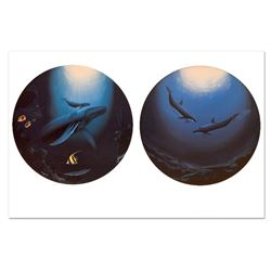 Innocent Age / Dolphin Serenity by Wyland