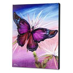 Rainbow Butterfly by  Martin Katon