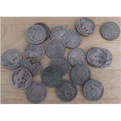 Twenty Old Buffalo Nickels