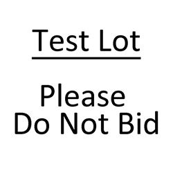 Test Lot. Please do not bid.