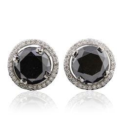 14KT White Gold 6.27 ctw Black Diamond and Diamond Earrings