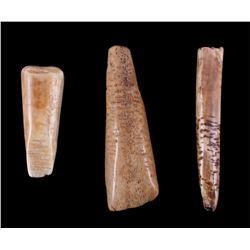 Ancient Eskimo Walrus Ivory Tools