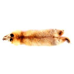 Montana Red Fox Fur Hide