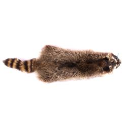 Montana Raccoon Fur Hide