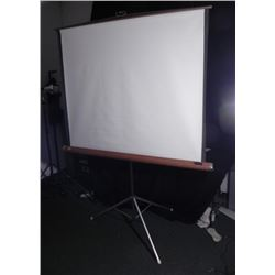 Radiant Vintage Projector Screen Large 57 Inch Wide