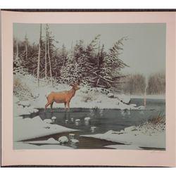 Wayne Cooper Signed Artist Proof Print Deer in Winter