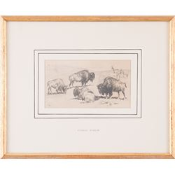 Edward Borein, pencil on paper