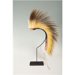 "Northern Plains Roach , 15"" long"