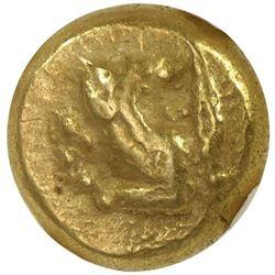 KYZIKOS: ca. 550-500 BC, AV hekte (2.72g), SNG van Aulock 1176, forepart of a wolf or hound