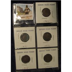 "504. 1889, 1891, 1892, 1900, & 1902 Indian Head Cents in 2"" x 2"" holders."