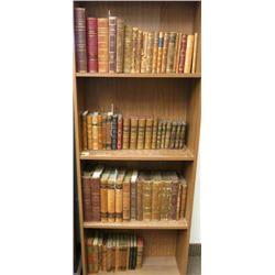Collection of Leather Bound Classic Books