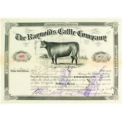 Raynolds Cattle Company Stock Certificate