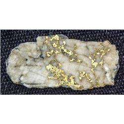 Grass Valley Gold-in-Quartz specimen 2