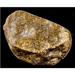 Grass Valley Gold-in-Quartz specimen 3