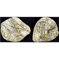 Grass Valley Gold-in-Quartz specimen 5