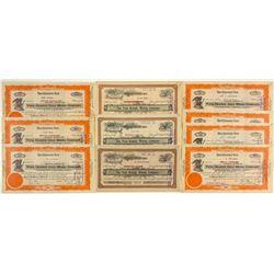Veta Grande Mining Company Stock Certificates