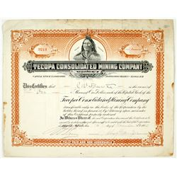 Tecopa Consolidated Mining Company Stock Certificate