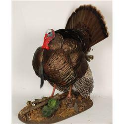 Full Turkey Mount