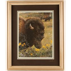 """Fine Art Print """"Witness of the Past Bison"""""""