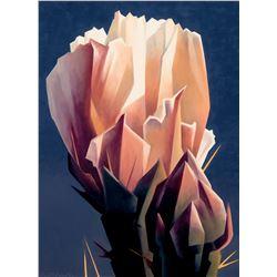 Arid Bloom