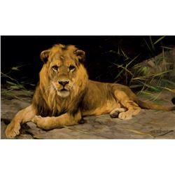 Lowe Von Der Hohle (Lion in a Cave)