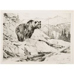 Silvertip (Bear)