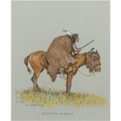 Stalking Buffalo