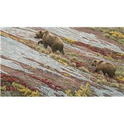 Alaskan Autumn Grizzlies