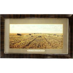 Large framed hand tinted photo