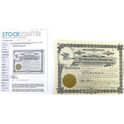 Scarce stock certificate for The Gray Goose