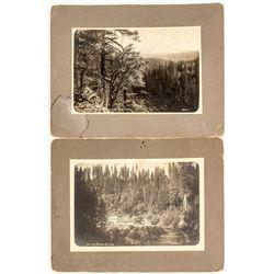 2 Photographs of Mt. Shasta Area