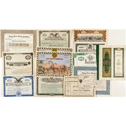 Eclectic Group of Southern California Stock Certificates