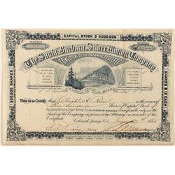 Santa Barbara Silver Mining Co. Stock Certificate