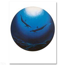 Dolphin Serenity by Wyland