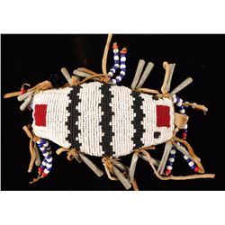 Native American Beaded Insect Fetish