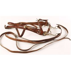 Beautiful Hand Carved Bridle & Reins