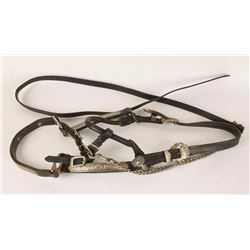 Nickel Plated Headstall