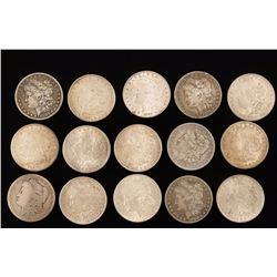Collection 15 Morgan Silver Dollars